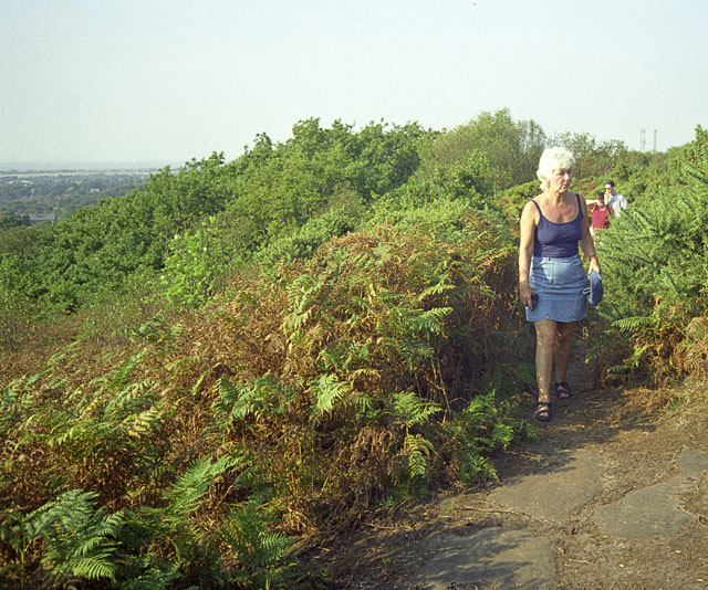 Near the top of Thurstaston Common, Wirral