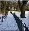 J3372 : Snow, Botanic Gardens by Rossographer