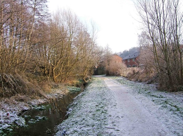 Path from Springfield Park to Chester Road