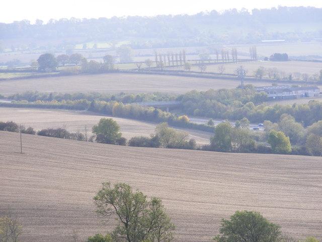 M40 View