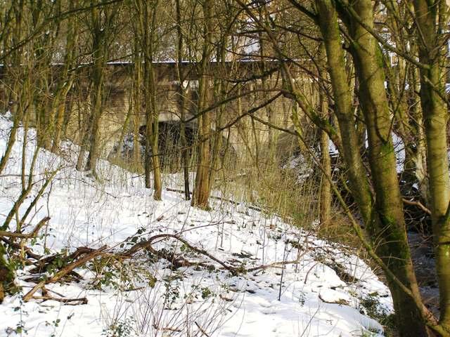 Shepherd Mill Bridge and Naden Brook, Norden