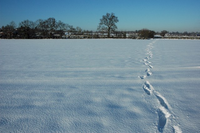 Footsteps on a bridleway