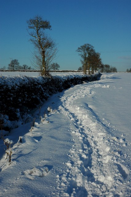 Snow covered bridleway, Earl's Croome