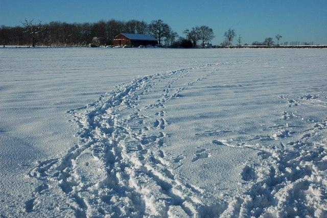 Snow covered farmland, Earl's Croome