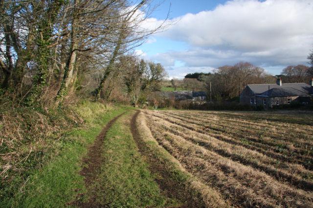 Farm track at Castle Horneck