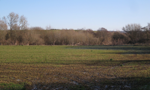 Field by the River Teign east of Leygreen