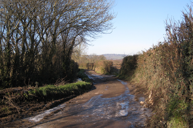 Lane to Brocks Farm north of Ventiford Cottages