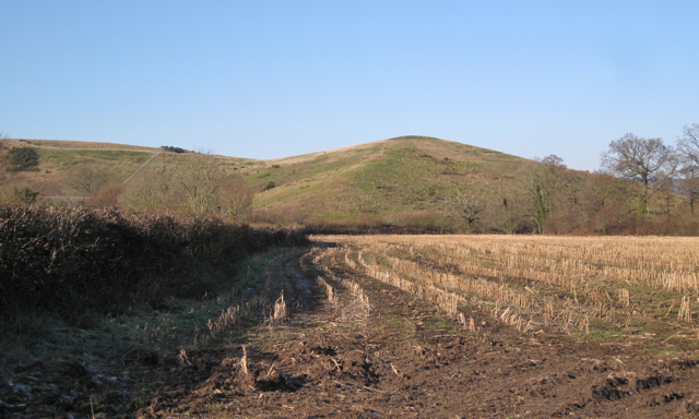 Waste heap southwest of Newbridge ball clay quarry