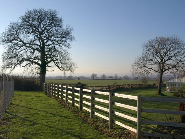 Trees and fence near Waldron's Farm