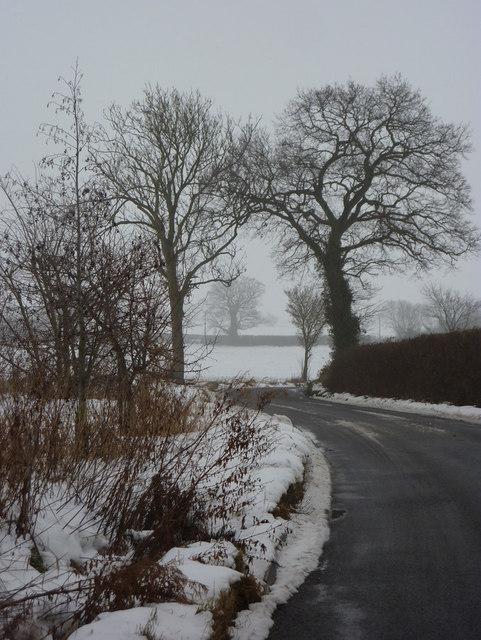 Ipswich Road from Elmsett
