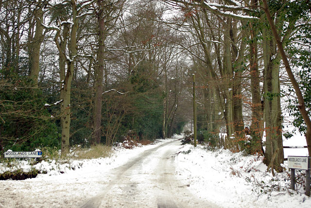 Woodlands Lane