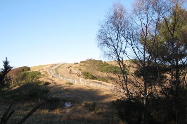 Clay waste heap west of Brocks farm