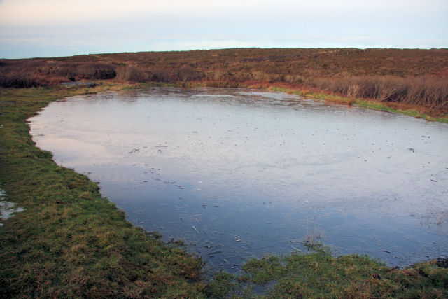 Unnamed pond at Carn Glaze