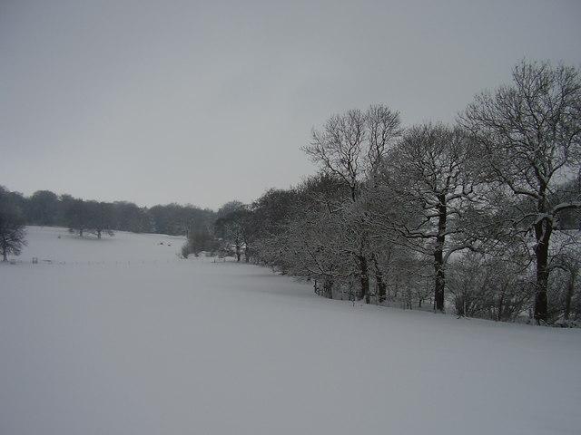 Broomhead halls parkland