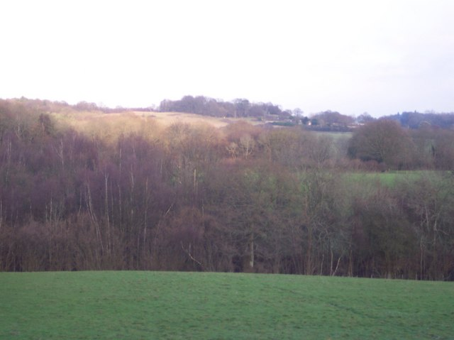 View from Cooksbroom Wood