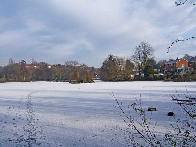 Frozen pond at Springfield Park