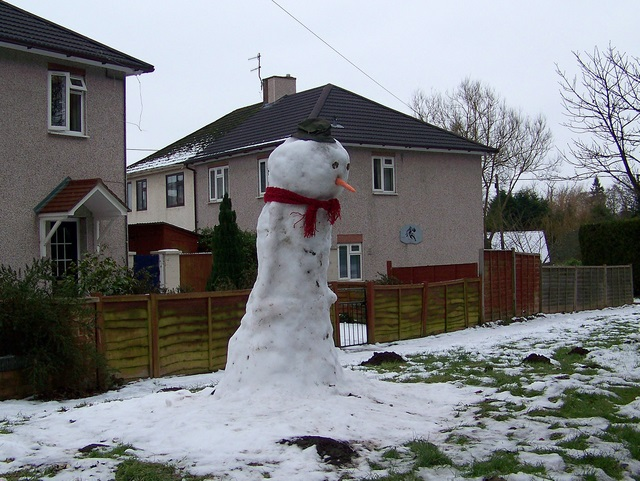 Frosty in Quidhampton