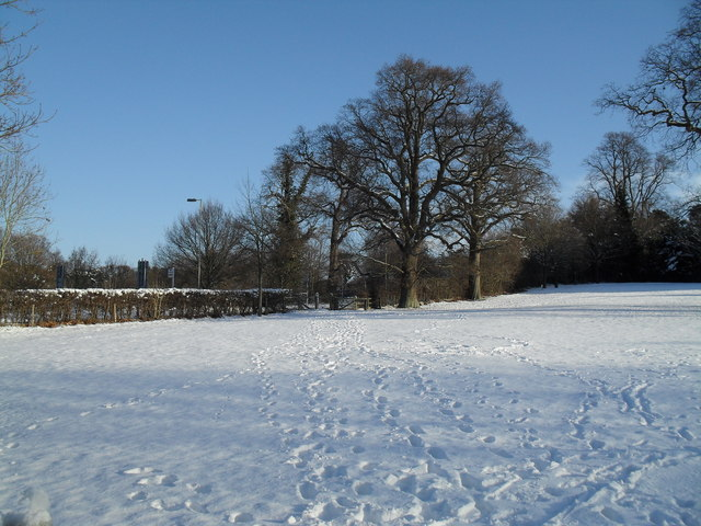 Snowy field to the east of High Lawn Way