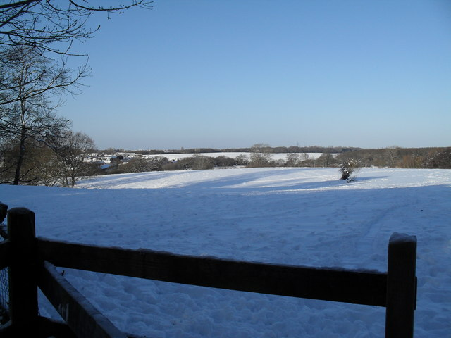 A snowy Staunton  Country Park north of Middle Park Way