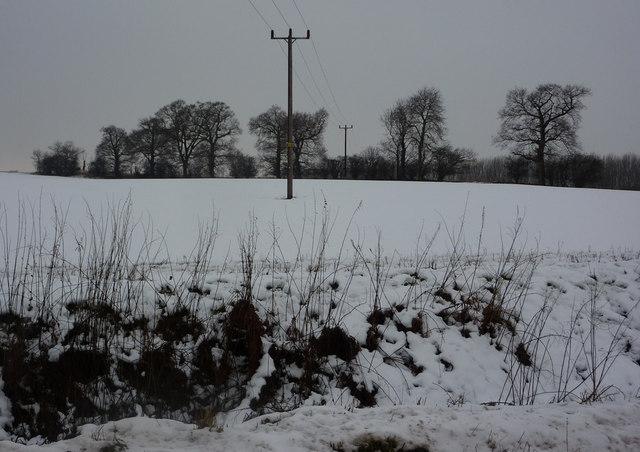 Snowy field south of lane