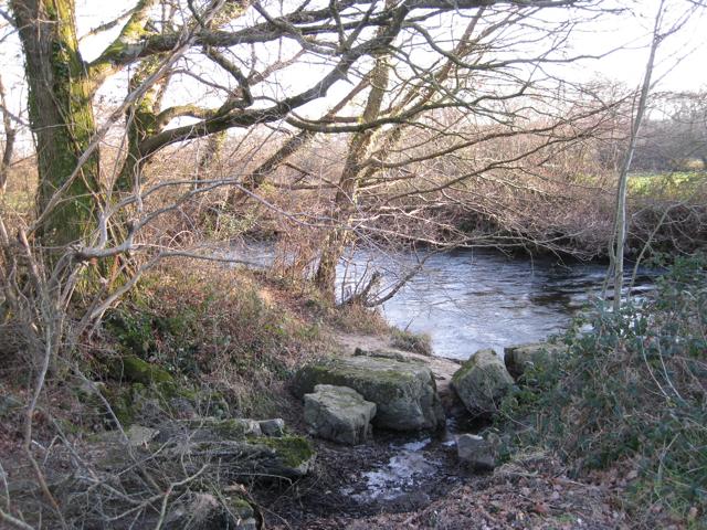 River Bovey near Little Bovey Farm