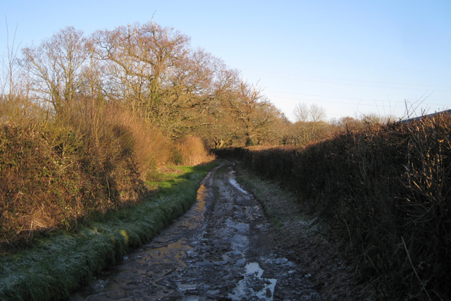 Bridleway to Chudleigh Knighton Heath