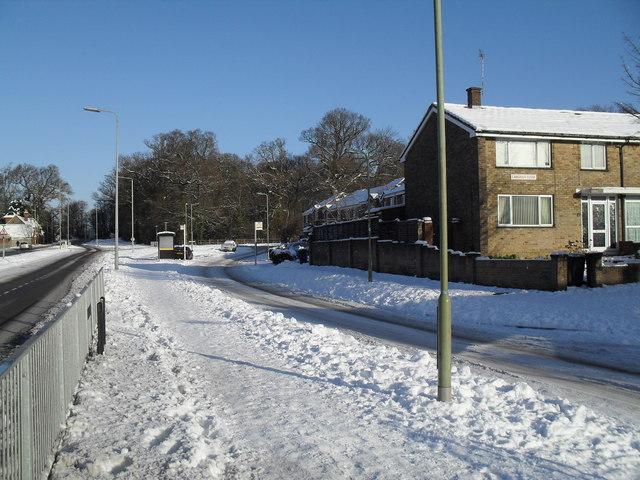 A snowy Crawley Avenue