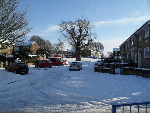 A snowy scene in Langrish Close