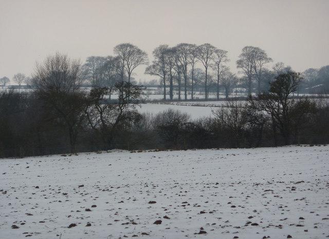View across fields on a snowy day