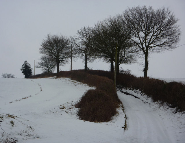 Lane to Hill Farm in snow