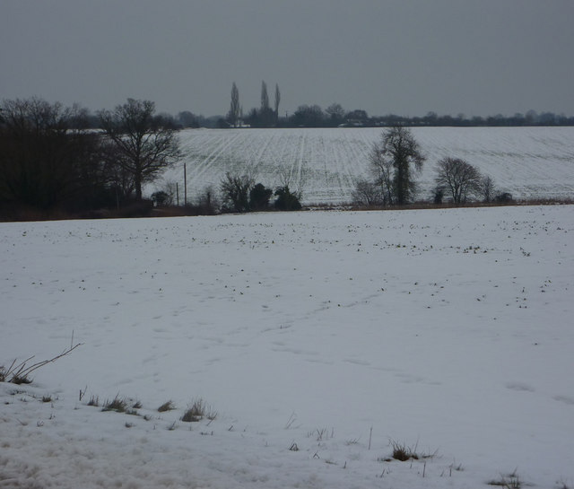 Fields by the Offton road