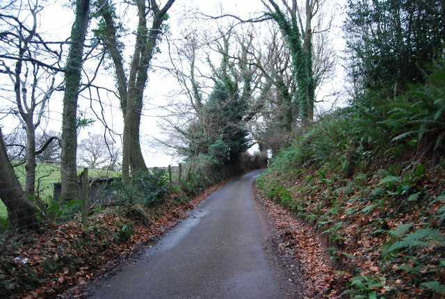 Luccombe Lane