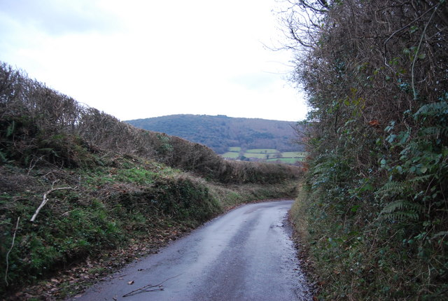 Lane descending into West Luccombe