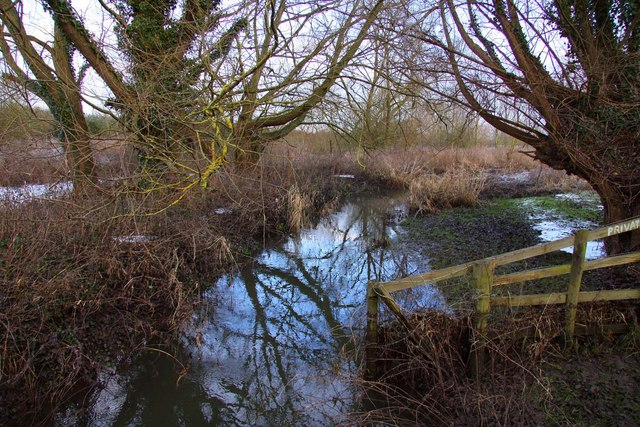 Brook by the River Thame