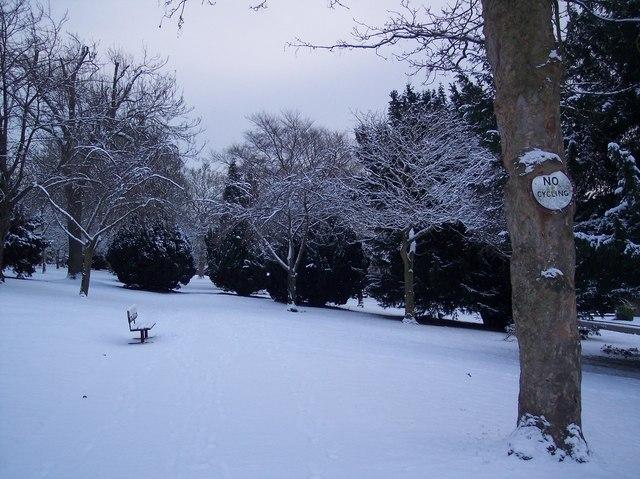 Town Hall Garden (Winter 2010)