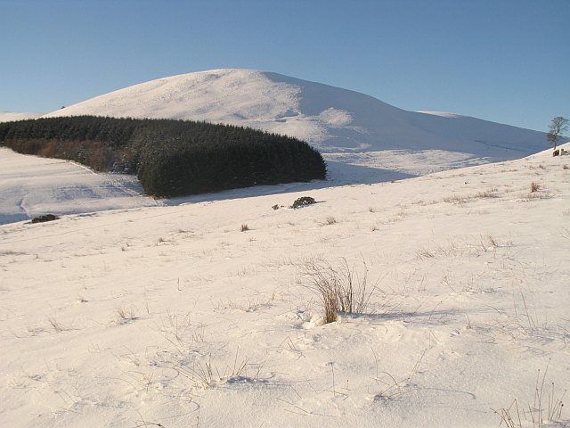 Rough grazing under snow, Kirkton