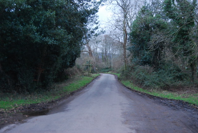 Lane south of West Luccombe