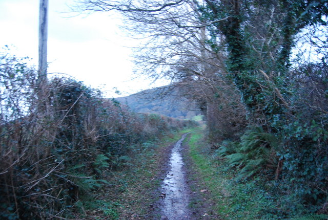 Watery Lane