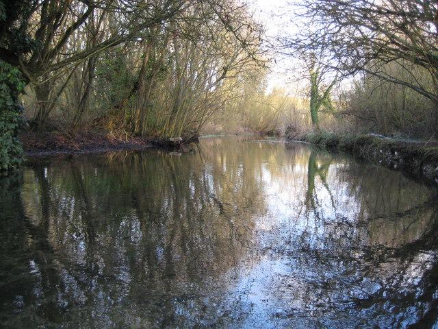 River Lambourn at Elton Farm