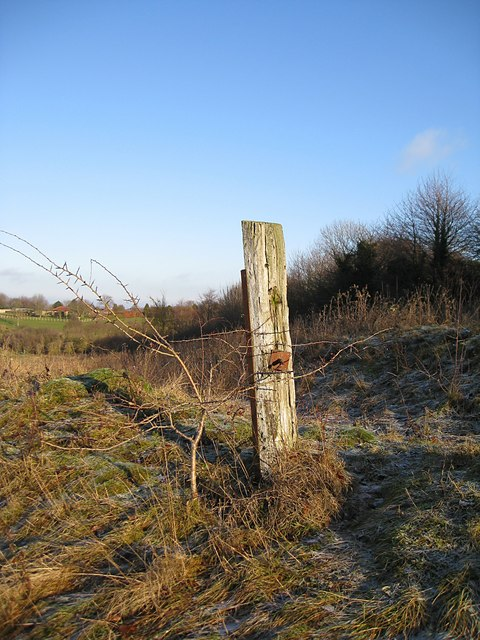 Old Post on Therfield Heath