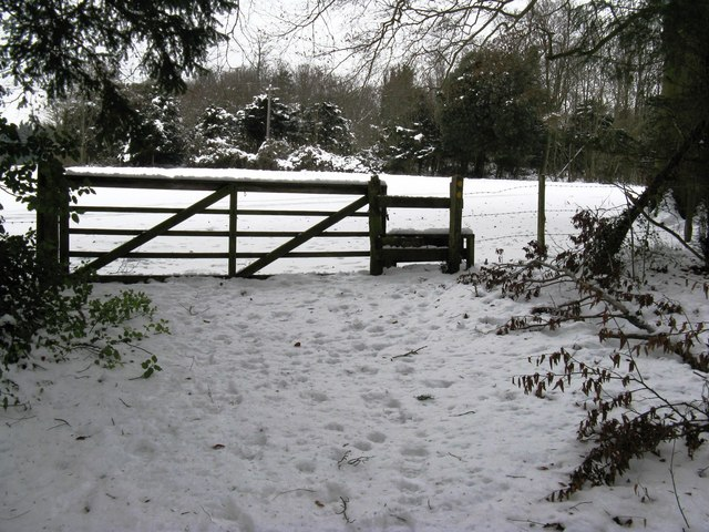 Gate and stile at the north end of Dencher Wood