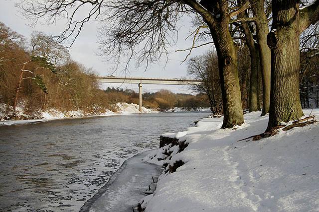 The River Tweed at Abbotsford
