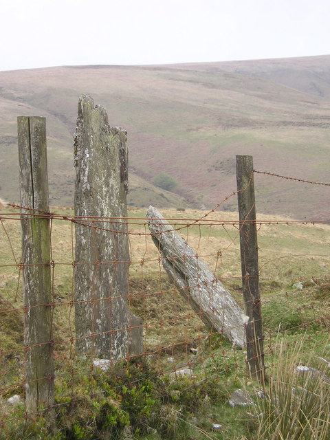 Exmoor Forest Boundary Marker Stone
