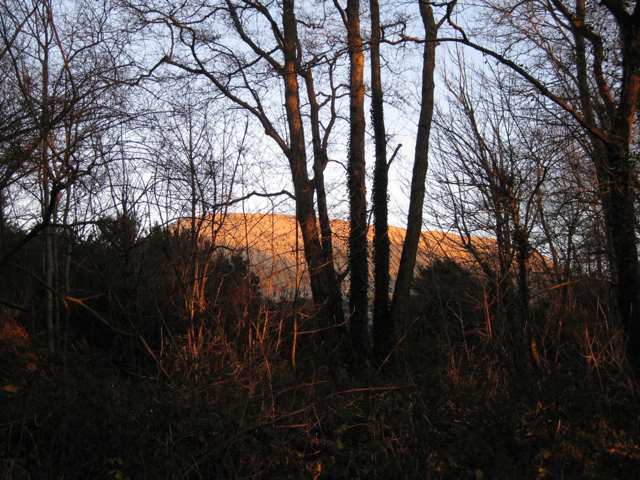 Clay waste, Southacre quarry