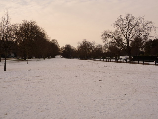Hyde Park: Rotten Row in the snow