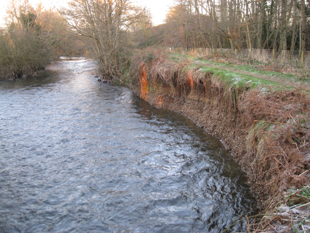 Recent erosion, east bank of the River Teign