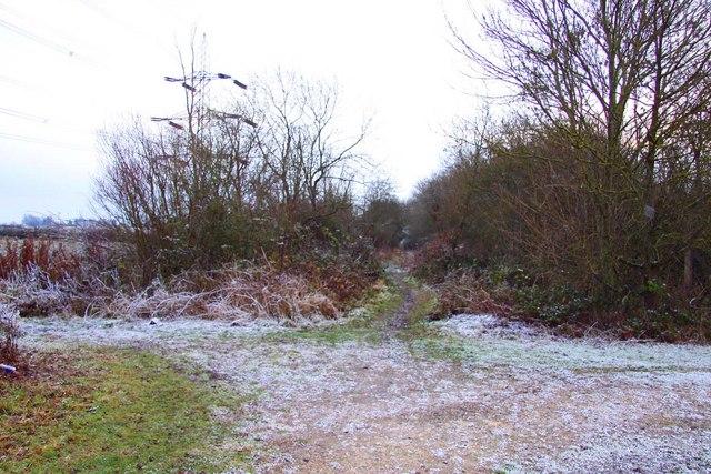 Bridleway to Marsh Baldon