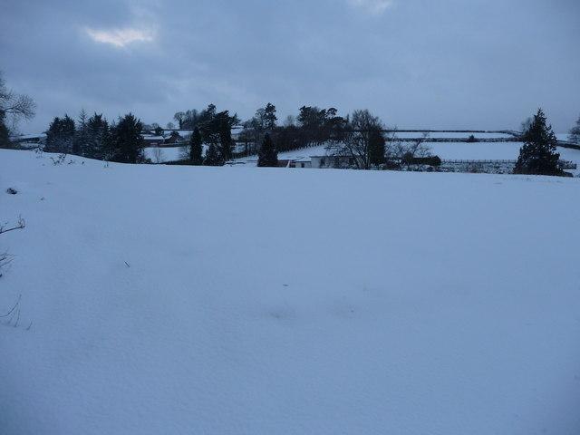 Tiverton : Bakers Hill Snowy Field
