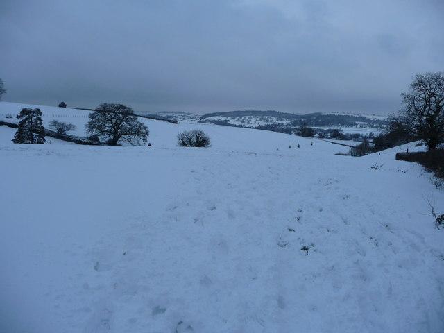Mid Devon : Snowy Field & Hillsides