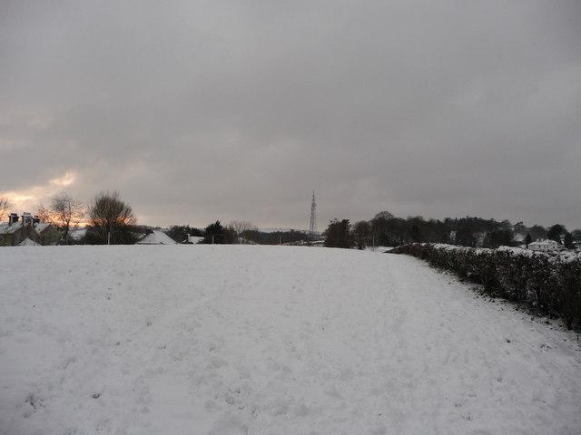 Tiverton : Snowy Field